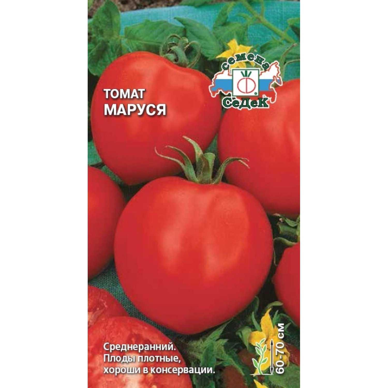 томат маруся отзывы фото часть освоил