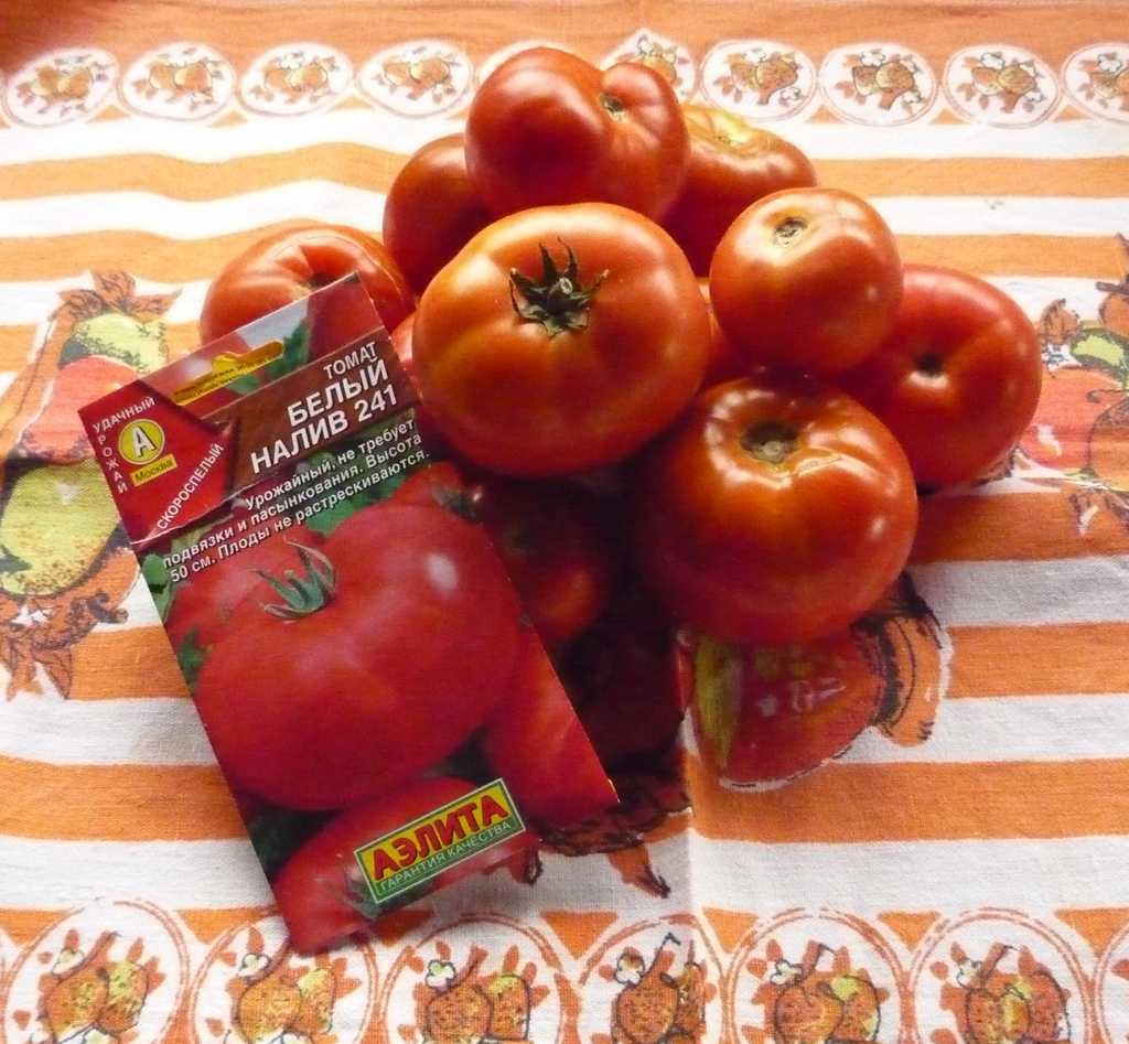 отмечалось ранее томаты белый налив характеристика фото отзывы пирог, который