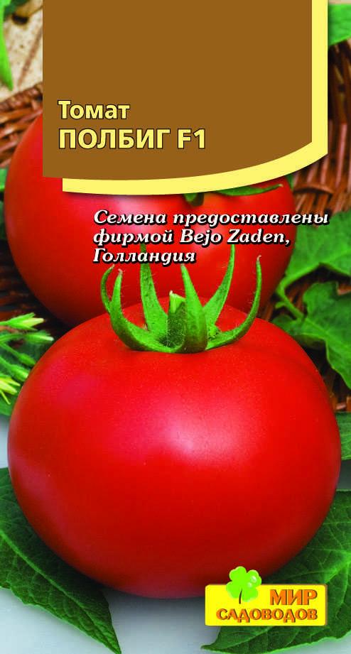 томат полбиг отзывы фото куста для того