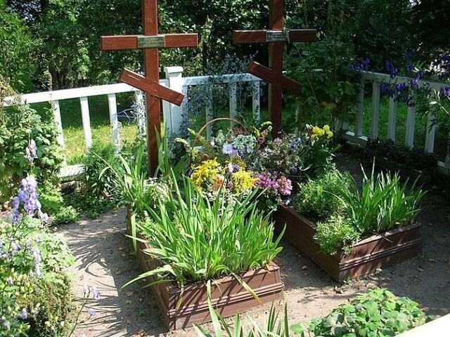Какие растения посадить на кладбище: деревья, кустарники и цветы