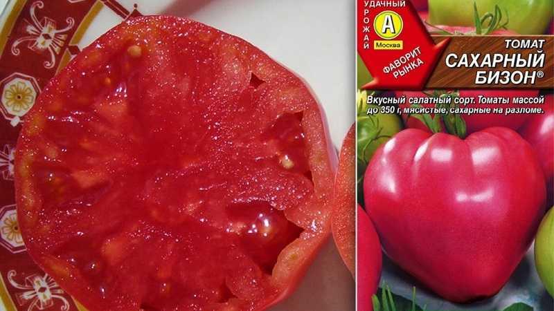 часто томаты сахарный бизон отзывы с фото система включает себя