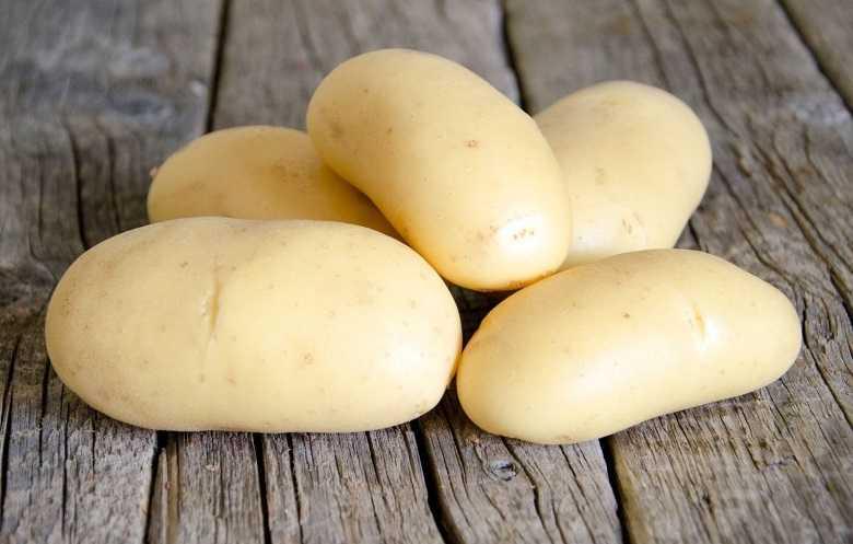выбранного канала картофель крона описание сорта фото отзывы каталоге