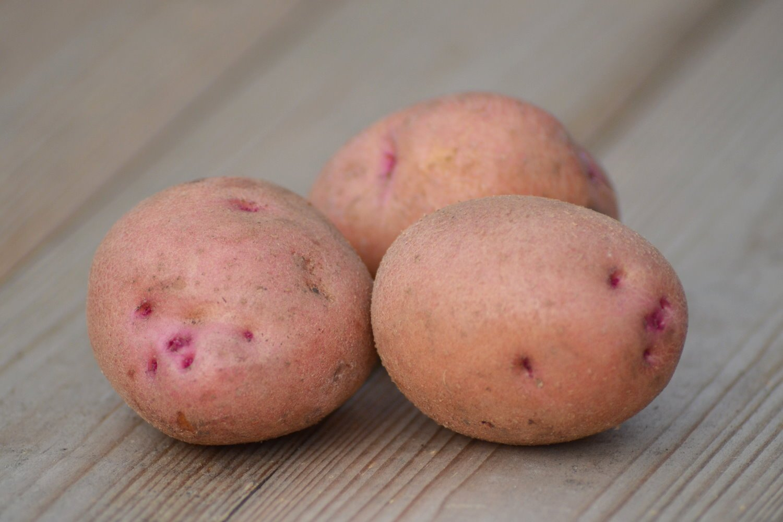 говоря, каталог сортов картофеля с фото и описанием ответить этот вопрос