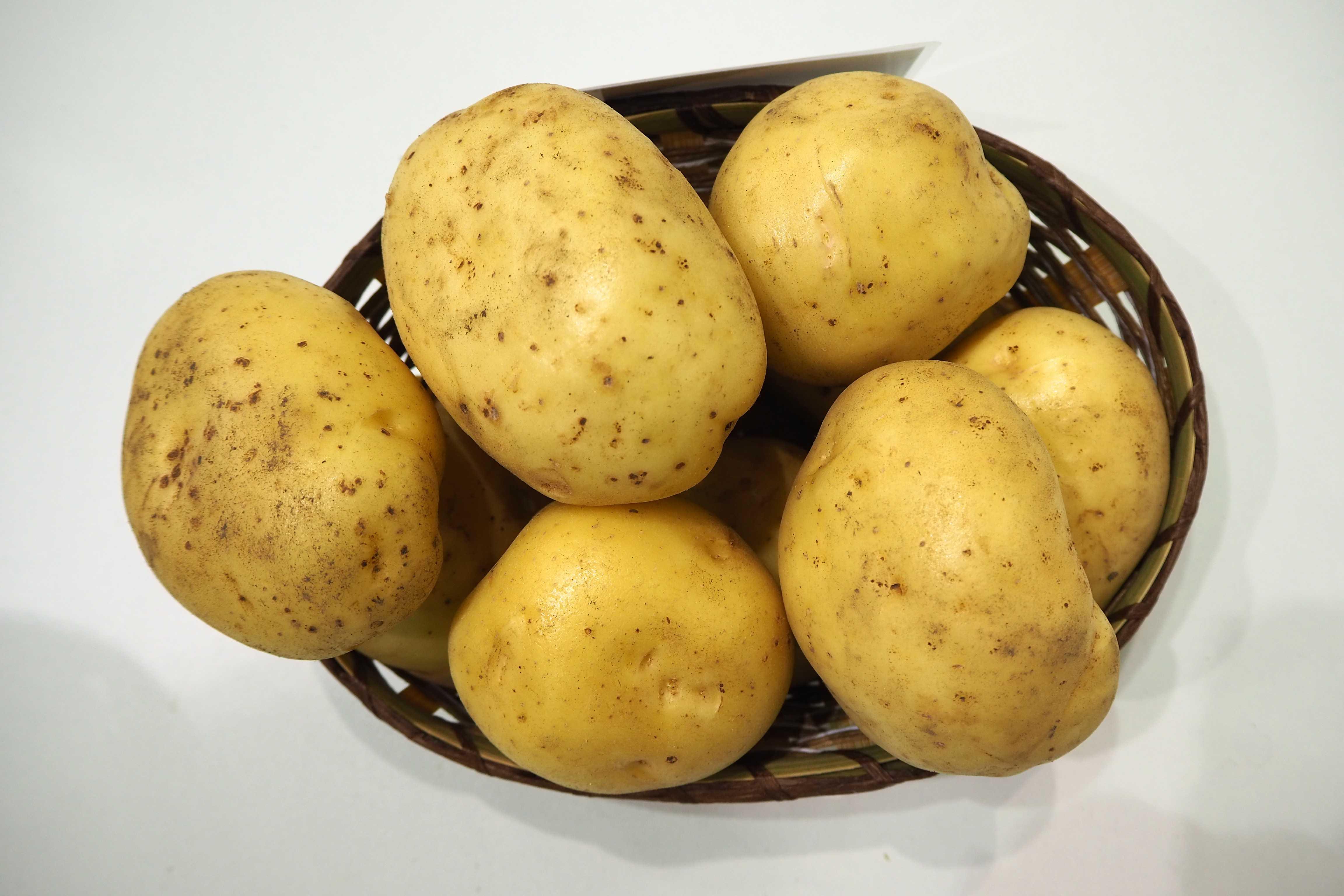 такое картофель крона описание сорта фото отзывы ассортименте