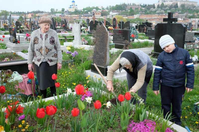 Какие цветы лучше посадить на кладбище