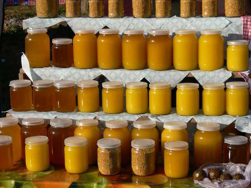 Картинки виды меда
