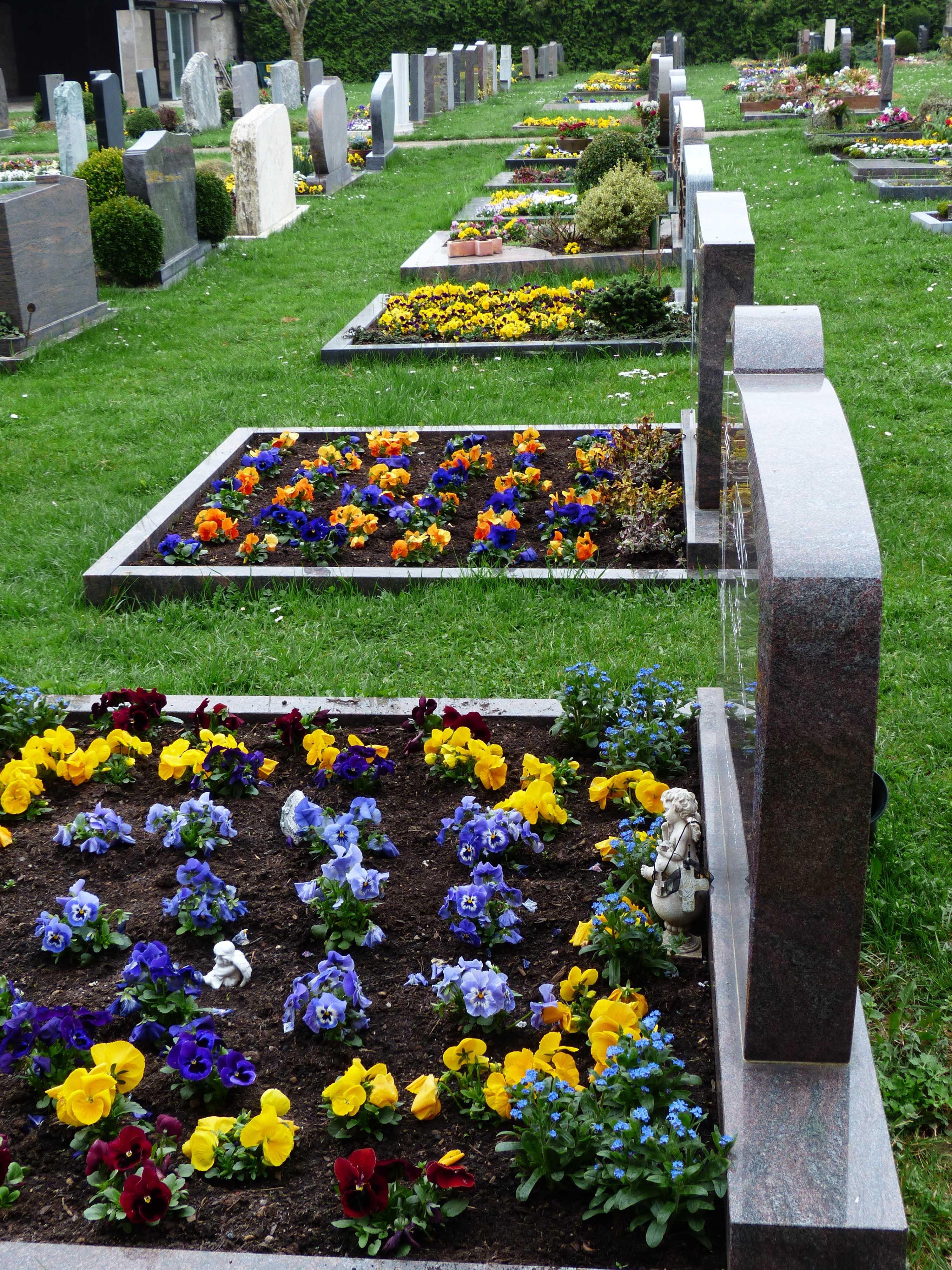 Многолетние низкорослые цветы для кладбища. какие цветы подходят для кладбища?