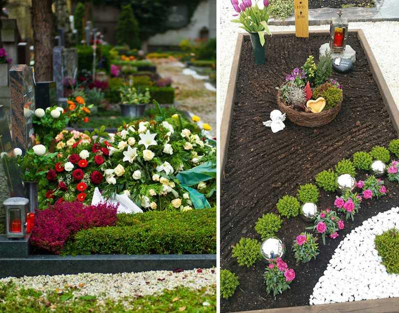 Какие цветы лучше посадить на кладбище, чтобы они украсили могилу
