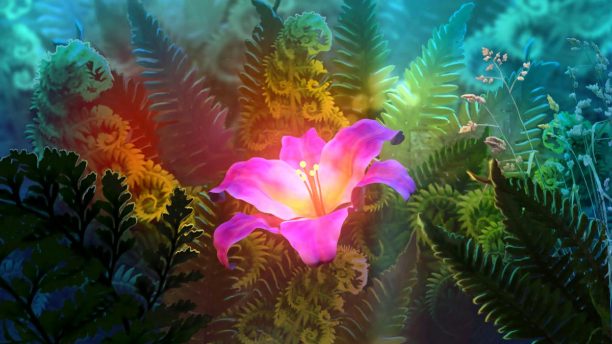 Цветок папоротник картинки