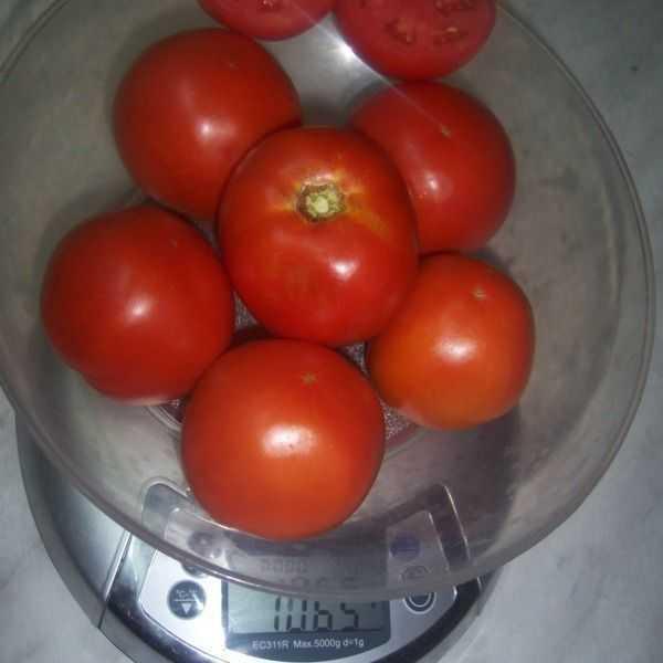 что парню томат киржач отзывы фото рассказал максим, остановить