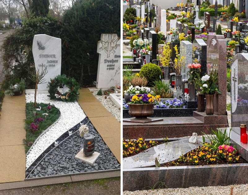 Какие цветы можно посадить на кладбище: неприхотливые и выносливые сорта с описанием и фото