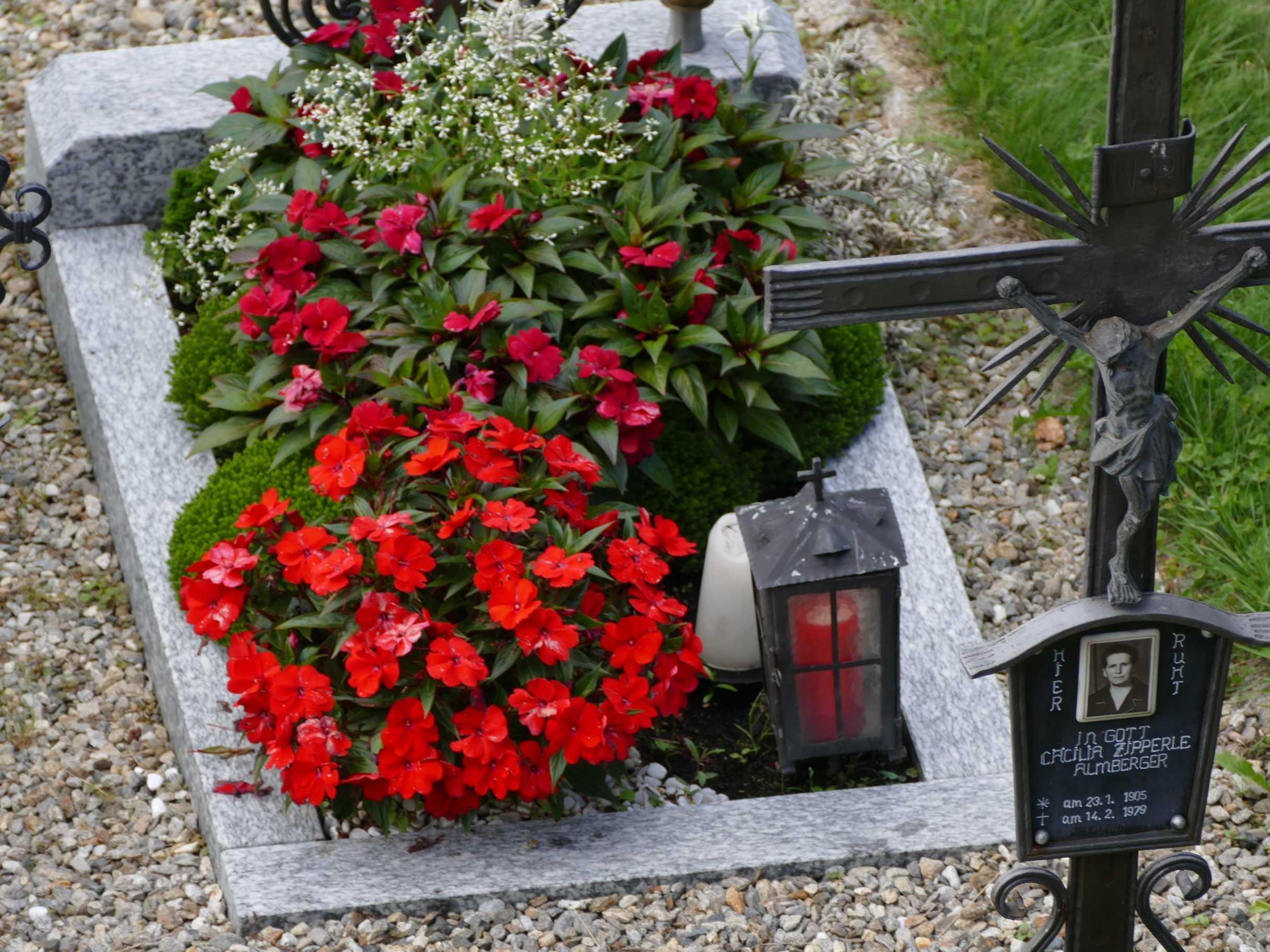 Какие цветы посадить на кладбище, а какие растения, не нужно сажать на могиле