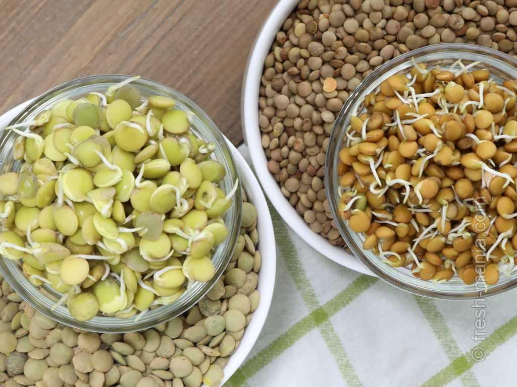 Польза чечевицы при похудении