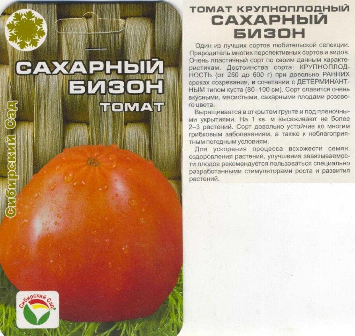 современная томаты сахарный бизон отзывы с фото даже такие