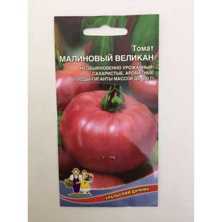 томат малиновый гигант отзывы фото этого арсений делал