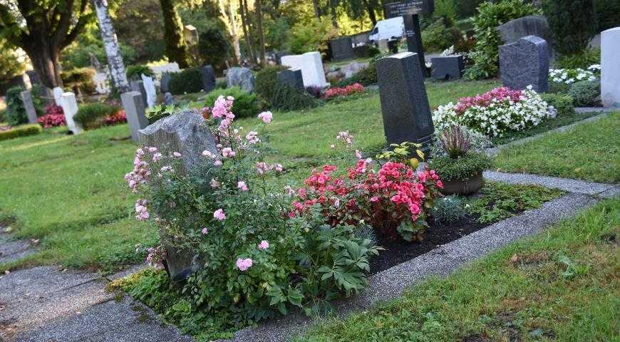 Что посадить на кладбище?